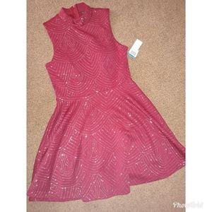 NWT NEVER WORN Cranberry Dress size 9